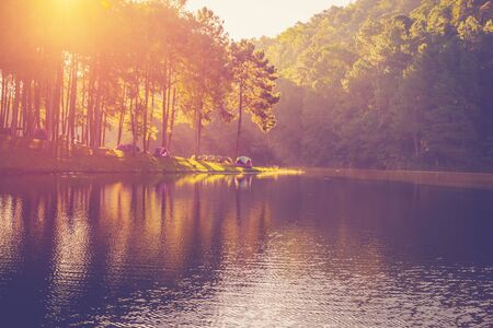 natural light: Pond water and sunrise with vintage effect. Stock Photo