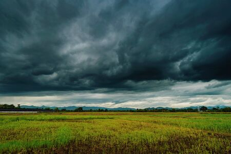 Natural scenic beautiful field and storm clouds and green field agricultural background