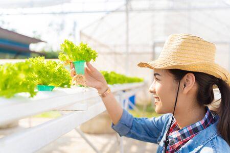 Agricoltori asiatici che tengono azienda agricola idroponica dell'insalata di verdure.