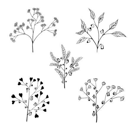 Ensemble de branches d'herbes stylisées avec des fleurs, des feuilles et des coeurs. isolé sur fond blanc. Croquis de dessin à la main.