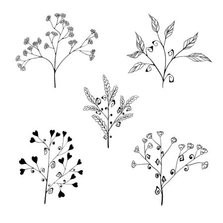 Set of stylized herb branches with flowers, leaves and hearts. isolated on a white background. Hand drawing sketch.