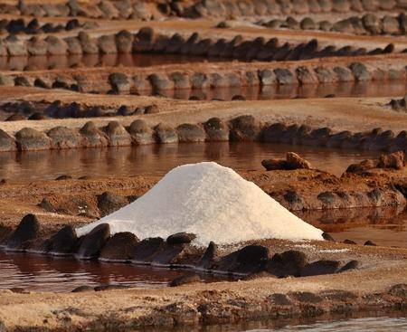 mound: Mound of  salt in coastal saline