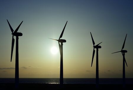 windfarm: Wind turbines at dawn with intense sun background