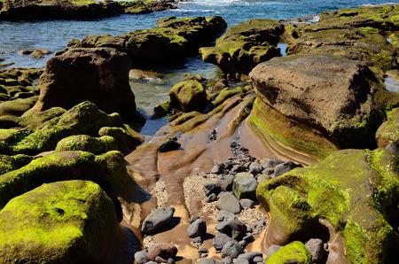 Peculiar shapes at low tide, The confital, coast of Gran Canaria, Canary islands