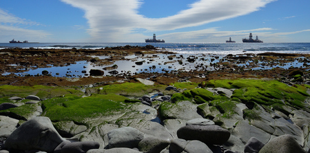 Rocky coast at low tide, blue sky with clouds and ships in the bay Imagens