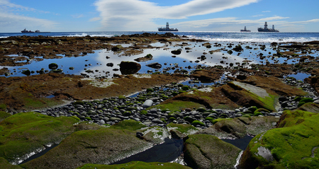 Coast of colors at low tide and ships in the background, bay of Las Palmas, Canary Islands Imagens