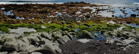Colorful rocky coast with water puddles and small stones at low tide