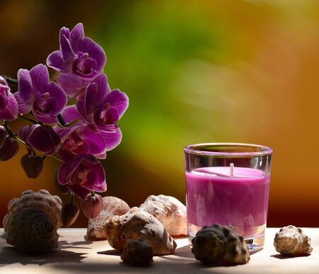 Photographic composition with lavender candle in glass, small seashells and orchid flowers