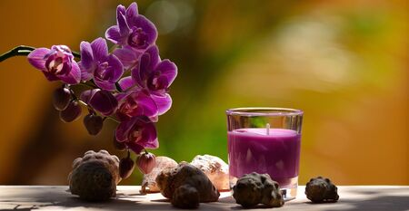 Beautiful orchid flowers, small seashells and scented lavender candle in glass