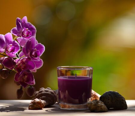 Scented candle in glass, small seashells around and colorful orchid flowers Фото со стока