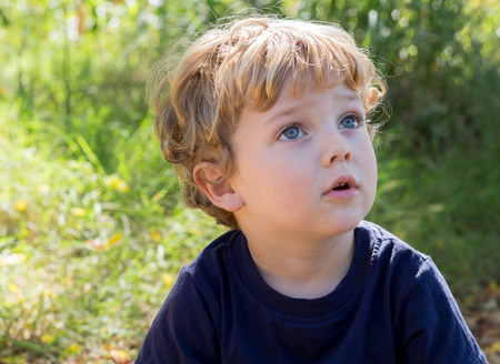 Photo of young boy on the green grass staring up in the sky in wonderment