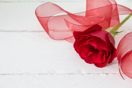 narrow depth of field: Narrow depth of field shot of single red rose with organza red ribbon on white wood background