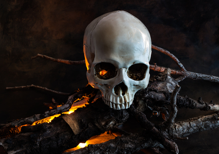 Halloween human skull with wood fire