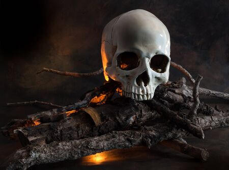 cadaver: Human skull on wood fire