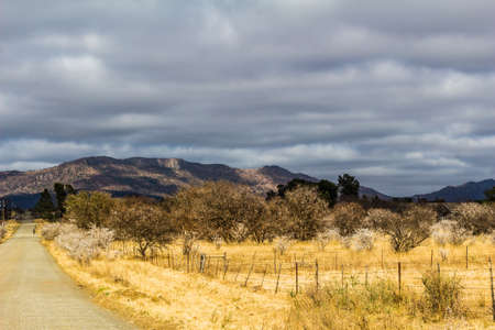 South African landscape - Dry dusty rural Eastern Cape image with lonely dirt road and cloud sky