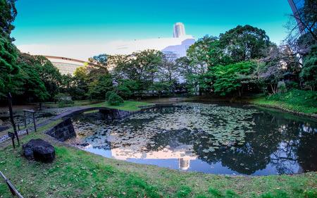 小石川後楽園で午後の日光。