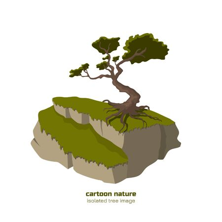 Isolated tree on mountain. Nature landscape with oak on rock. Outdoor scene in cartoon style on white background. Forest plant Illustration