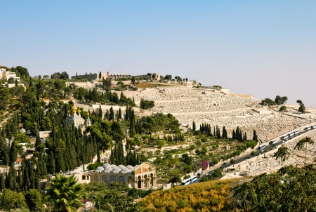 Gethsemane, and the Church of all Nations   on the Mount of olives in Jerusalem Archivio Fotografico