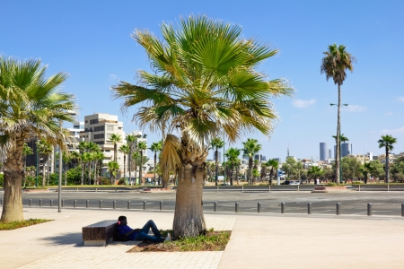 azrieli tower: Man sleeps under a Palm tree on Tel Aviv promenade in Israel