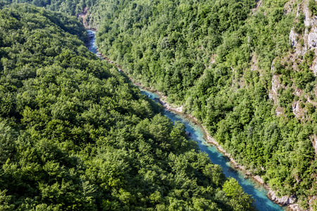 tara: The view from the height of the Tara River Canyon in Montenegro