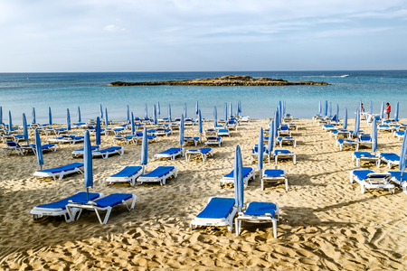 cyprus tree: May 24, 2016.Protaras.Chairs with umbrellas on the beach in Fig tree Bay in Protaras .Cyprus.