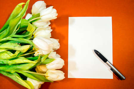 A bouquet of beautiful tulips and a sheet of paper on an orange background top view. Background of Mother's Day, International Women's Day. Holiday, give a gift.