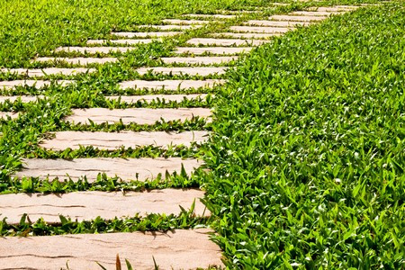 yardline: Grass field brick Stock Photo