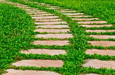 yardline: Grass field with brick