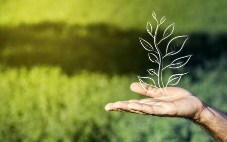 Geschäft und Natur Metapher Standard-Bild - 55635625