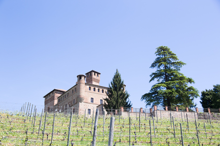 cavour: Medieval Castle in the north of Italy