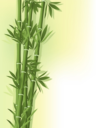 leaf close up: Bamboo with siluets on the old paper background Illustration