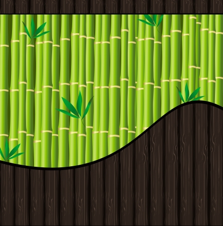 Natural background with bamboo and wood texture Stock Vector - 14569076
