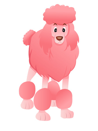 front facing: A cartoon illustration of a pink poodle standing on its four legs, front facing.  Illustration