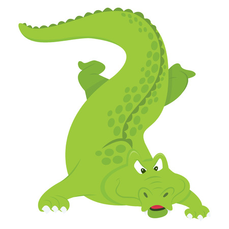 menacing: A cartoon vector illustration of a evil looking and front facing green crocodile. Illustration