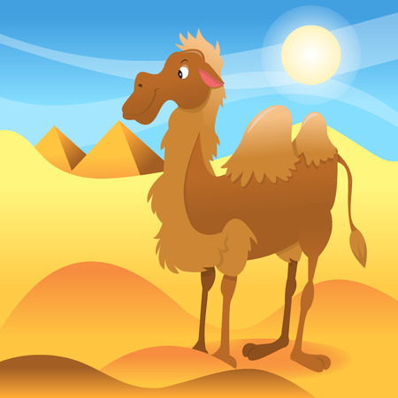 cartoon camel: A cartoon vector illustration of a happy camel standing in middle of sahara dessert with pyramid backdrop. Transparency effects are used on the skysun. Illustration