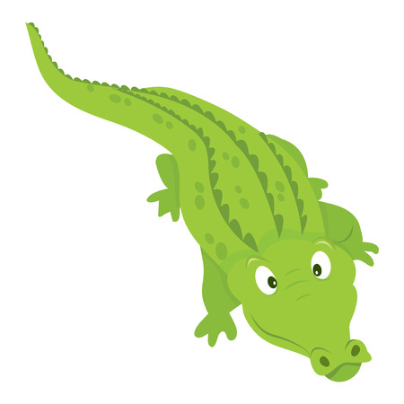 smilling: A cartoon vector illustration of an aeriew view of happy and smilling crocodile. Illustration