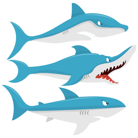 aquatic mammal: A cartoon vector illustration of three mean sharks. Illustration
