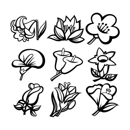 wacom: A vector illustation doodle of different flowers. This illustration was created using brush tool on illustrator with a wacom tablet. Illustration