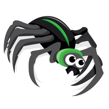 arachnid: A cartoon vector illustration of a black spider.