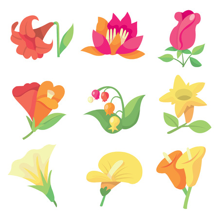 lily buds: A stock vector illustration of nine different sweet spring flowers. Illustration