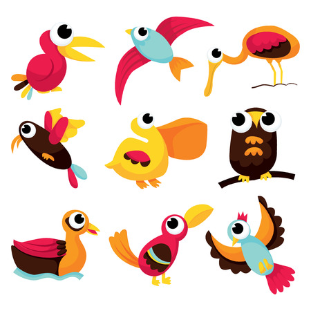 illustration collection: A vector illustration collection of different kind of cartoon birds.