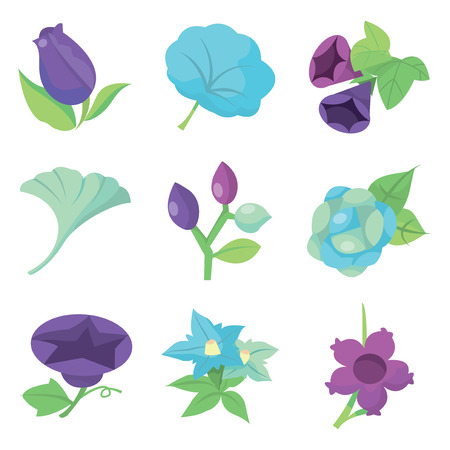 flora  vector: A vector illustration of nine different sweet autumn flowers.