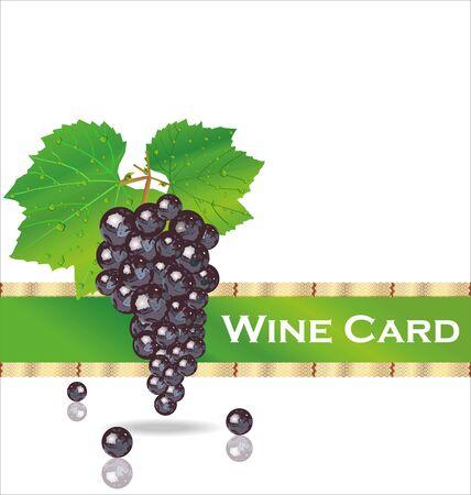 Wine card Stock Vector - 19160234