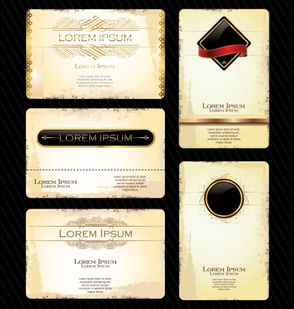 Business card with Calligraphic Design elements Vector