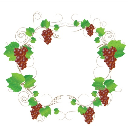Grape wine concept Vector