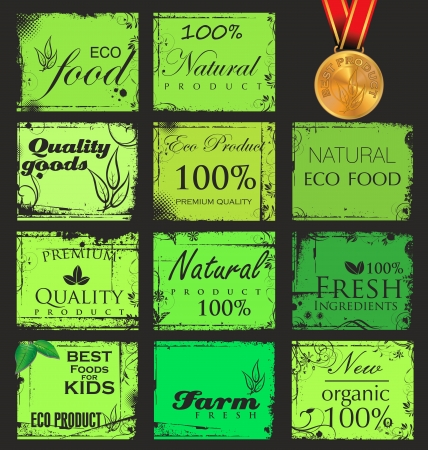 Collection of vintage retro grunge bio and eco organic labels Vector