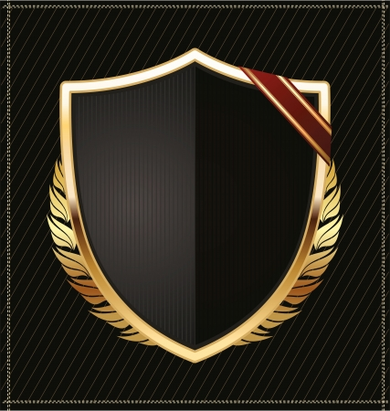 Black and gold shield Vector
