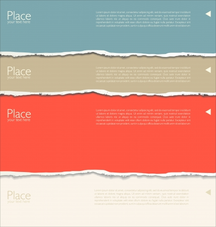 torn paper edge: Torn paper background with space for text