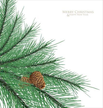 pine needles: Pine cones with branc