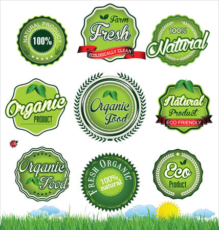 sticker design: Natural eco green label collection